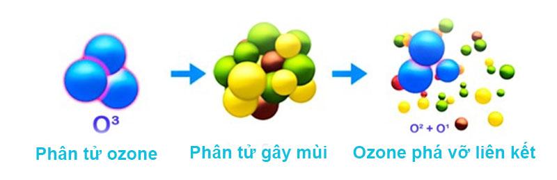Ozone phá vỡ liên kết gây mùi